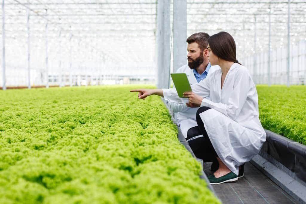 Study-Agriculture-in-Australia